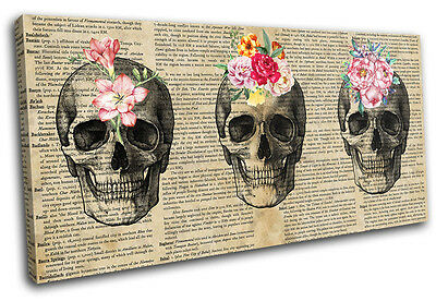 Skull Floral Shabby Chic Vintage SINGLE CANVAS WALL ART Picture Print • 29.99£