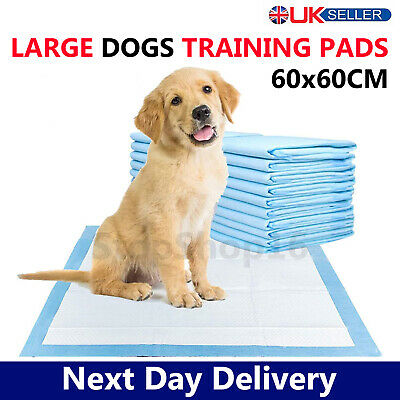 £11.95 • Buy Heavy Duty Dog Puppy Large Training Pads Wee Wee Pad Floor Toilet Mats 60 X 60cm