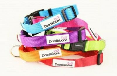 Doodlebone Dog Puppy Bold Durable Nylon Adjustable Collar Various Colours XS-XL • 4.49£