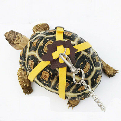£3.19 • Buy Pet Tortoise Turtle Leather Harness Strap Chest Collar Walking Lead Control Rope
