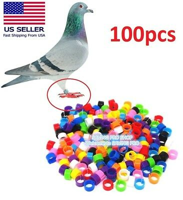 £5.66 • Buy 100pcs Bird Rings Leg Bands For Pigeon Parrot Finch Canary Hatch Poultry Rings