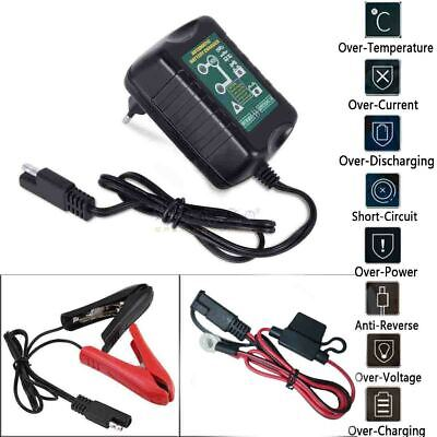 battery charger desulfator