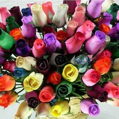 WOODEN ROSES - Closed Bud - Colours - 1/2 Dozen - Mothers Day Birthday - Flowers • 7.33£