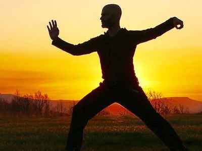 Learn Tai Chi Qigong Style 2 Disc Pack Dvd Cd Meditation, Practice, Exercise • 3.99£