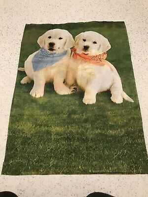 Golden Labradors Dogs Puppies Puppy 100% Cotton Remnant Craft Material Fabric A • 2.50£