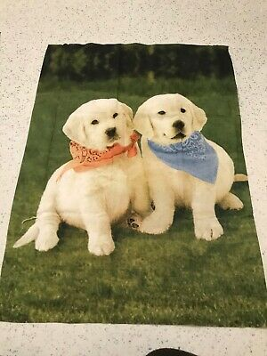 Golden Labradors Dogs Puppies Puppy 100% Cotton Remnant Craft Material Fabric B • 2.50£