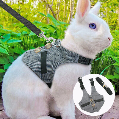 £5.49 • Buy Rabbit Small Dogs Cat Walking Harness Jacket & Lead Gentle Suit For Chihuahua