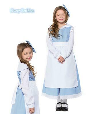 $28.03 • Buy Beauty And The Beast Belle Blue Maid Girl Classic Village Dress Book Day Costume