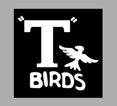 £3.75 • Buy T Shirt Iron On Vinyl HTV Transfers A4 T Birds White  Grease,stag, Hens, Party