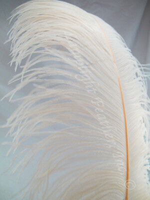$9 • Buy White Ostrich Feather Plume Premium Large 22-26 Inch Per Each