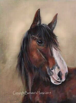 Shire Horse, Equestrian Fine Art/giclee Print, Wall Art, Painting, Picture  • 26.99£