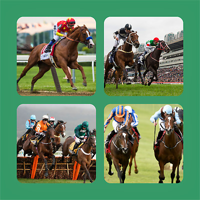 £9.99 • Buy HORSE RACING S1 - NOVELTY COASTERS GIFT IDEAS  Dad Fathers Day Grandad SET OF 4