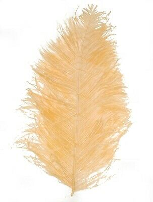$14.99 • Buy 2 PCs OSTRICH PLUMES 8 -18  FEATHERS COLOR : PEACH For Hats/Bridal