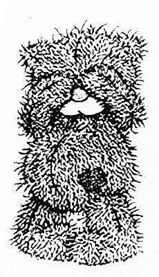 Small Shy Teddy Bear Covering Eyes Cartoon Clear Cling Stamp • 3.19£