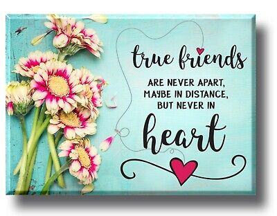 £3.50 • Buy True Friend Plaque Sign Gift Shabby Chic Colleague Mum Sister Daughter Christmas