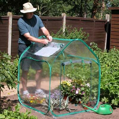 Pop Up Mini Greenhouse  • 47.91£
