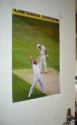 Ian Botham Cricket Legend Colour Poster Celebrating #3 • 5.99£