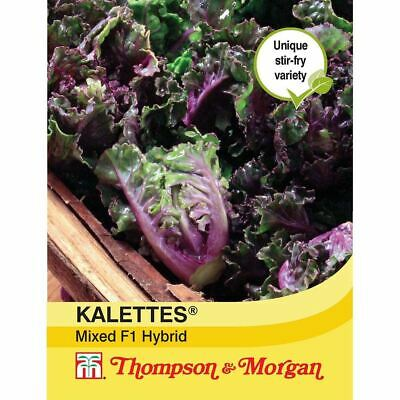 £3.49 • Buy Thompson & Morgan - Vegetables - Brussels Sprout Petit Posy Mix - 30 Seed