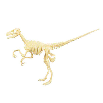 $9.39 • Buy Realistic Dinosaur Skeletons Jigsaw Puzzles Dino Party Favor Toy Gift #4