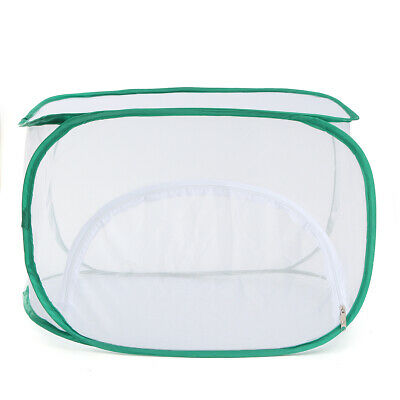 $20.43 • Buy Praying Mantis Stick Insect Cage Butterfly Chameleon Housing Enclosure Case Bag