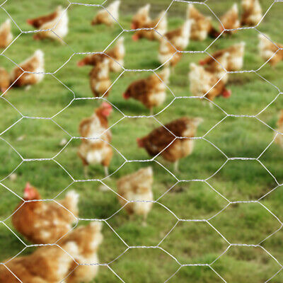 Galvanized Metal Wire Mesh Roll Garden Aviary Chicken Fence Netting 25mm/50mm • 27.54£