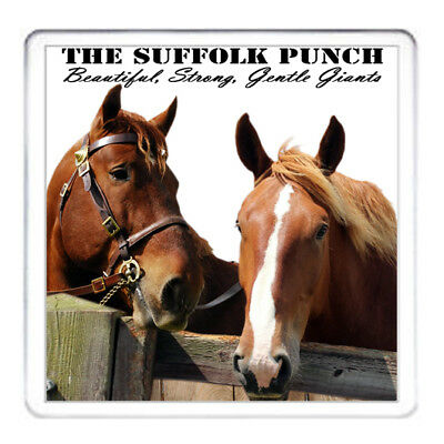 SUFFOLK PUNCH SHIRE HORSES GIFT COASTER Matching Heavy Horse Mug Available • 5.99£