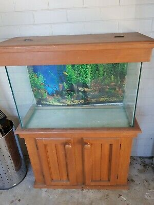 AU150 • Buy Glass Fish Tank With Cabinet And Hood - 2.5FT *1FT *1.5FT
