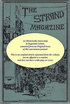 £12.99 • Buy Phil May. An Original Article From The Strand Magazine, 1906. 1906