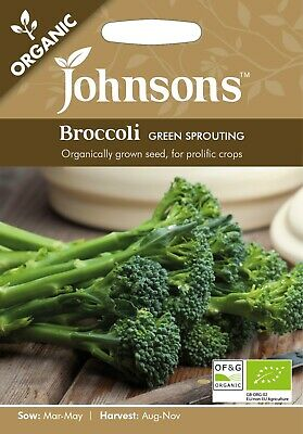 £3.80 • Buy Organic Broccoli Seeds 'Green Sprouting' By Johnsons FREE UK DELIVERY Brassica