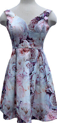 AU27.99 • Buy FOREVER NEW FLORAL COCKTAIL PARTY FIT & FLARE DRESS SIZE 6 Pink Rose Pattern