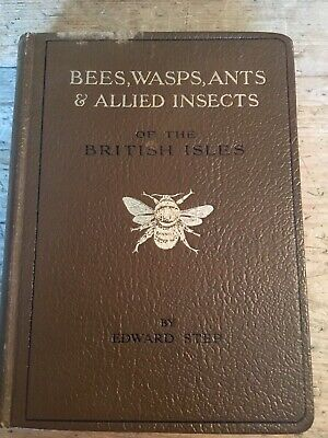 Bees,Wasps,Ants & Allied Insects Of The British Isles. Edward Step. 1932 • 25£