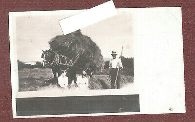 RP HAYMAKING SHIRE HORSE AND CART OF HAY FARMING By H BENTLEY BARROW IN FURNESS  • 14.84£