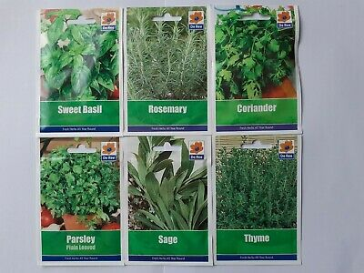 Herb Seed Collection H6/1.Parsley, Sage, Coriander, Basil, Rosemary, Thyme.  • 5.70£