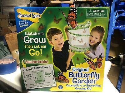 £20.26 • Buy New  Insect Lore - Live Butterfly Garden With Caterpillar Voucher