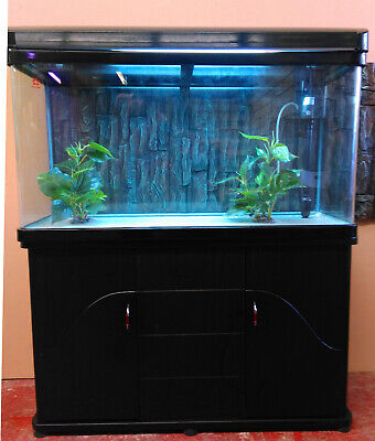 AU480 • Buy HY1000B Curved Glass Fish Tank (175 Lit) Complete Setup & Cabinet (Pickup Only)