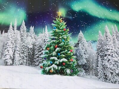 Charity Christmas Cards Tree Aurora Northern Lights Forest Acorn Village 10 Pack • 3.99£