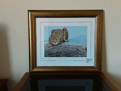 4 Stephen Gayford Wild Cat Framed And Signed Ltd Edition Prints From 2013.  • 45£