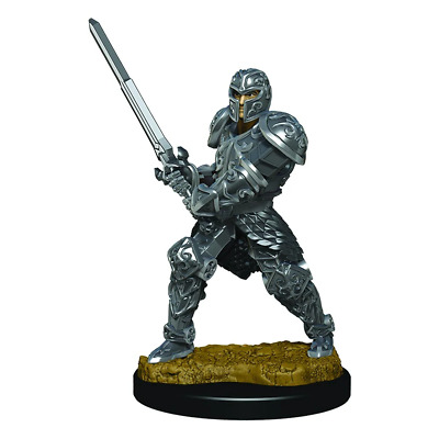 AU20.95 • Buy Dungeons & Dragons Premium Male Human Fighter Pre-Painted Figure NEW