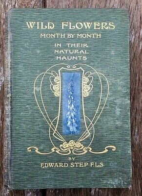 £12.99 • Buy Wild Flowers Month By Month Volume I Edward Step 1906 1st Edition Warne & Co