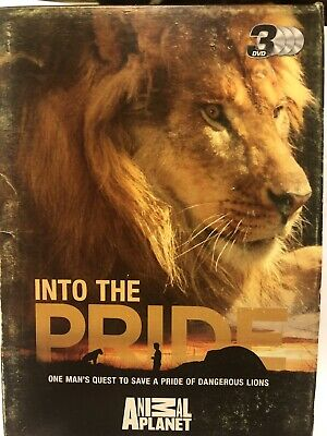 £7.50 • Buy Animal Planet . Into The PRIDE (Lions) 3 X DVD Set