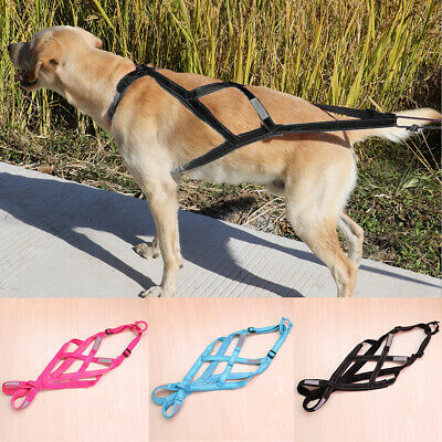 AU29.99 • Buy Reflective Dog Sled Harness Weight Pulling Training Strap Vest For K9 Skijoring