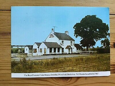 £14.99 • Buy The Royal Forester (The Cider House) Maidenhead Pub. Postcard