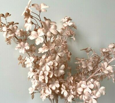 AU8.99 • Buy Dried Clover Foliage Stem Artificial Preserved Look Dusty Pink Flowers Fake Silk