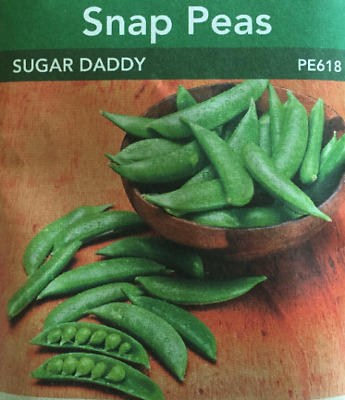 £3.49 • Buy Snap Peas Sugar Daddy 120 Seeds Non GMO Productive Canadian Seeds