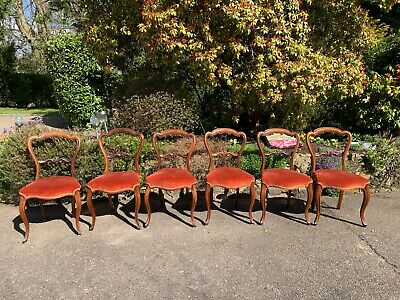 £365 • Buy Set Of 6 Victorian Rosewood Dining Chairs, Cabriole Legs, Excellent Condition