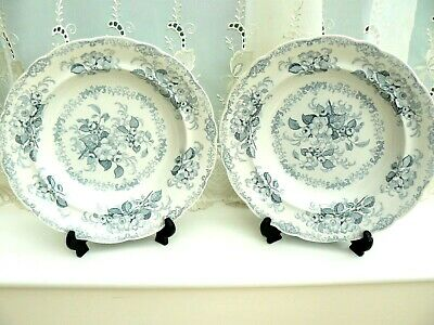£15 • Buy Pair Of Antique Williams Ridgway & Sons 19th Century Serving Bowls  ** Apple Bl