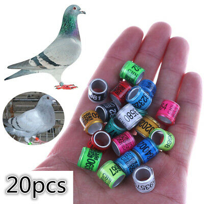 £3.09 • Buy 20PCS 8mm Bird Leg Rings Bands For Racing Pigeon Parrot Finch Canary Hatch C2UK