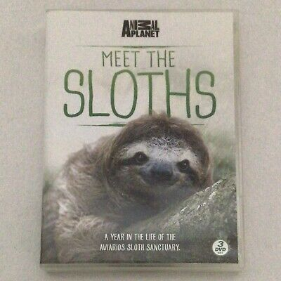 £4.45 • Buy Meet The Sloths TV DVD 3 Discs Box Set Region 2 Animal Planet Sally Phillips
