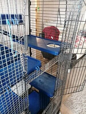 £35 • Buy Rat Cage. Very Large, Eight Shelves, Four Ladders, Three Doors.