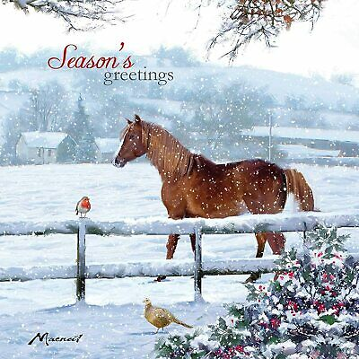 £4.99 • Buy Christmas Friends Horse Robin Snow 10 Charity Cards Pack Twin Pack 2 Designs